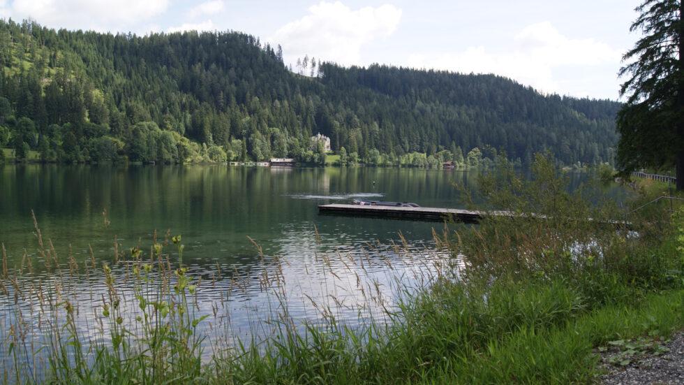 Tauchen im Erlaufsee - Foto: Mariazell Online